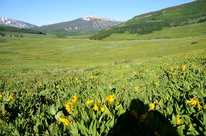 Teddy's Trail, Crested Butte (15)