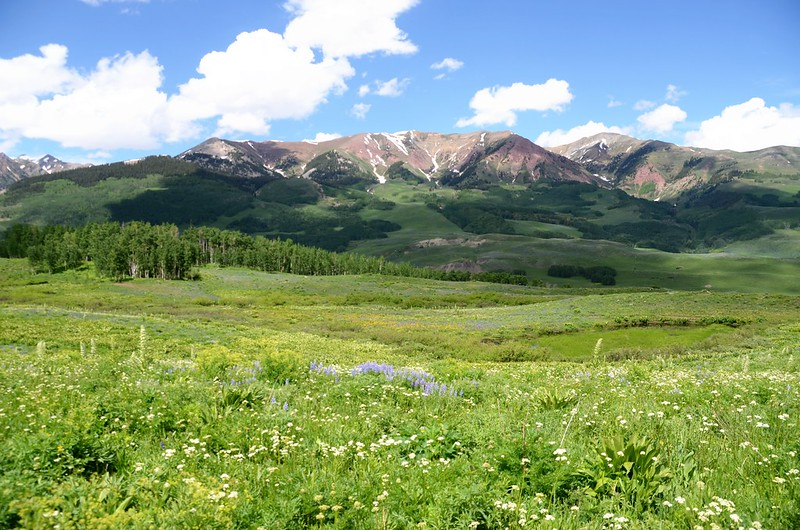 Teddy's Trail, Crested Butte (7)