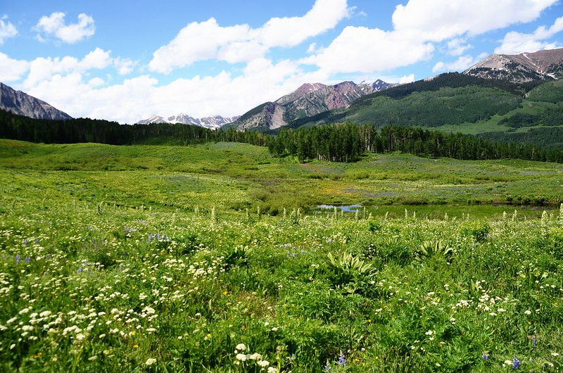 Teddy's Trail, Crested Butte (6)