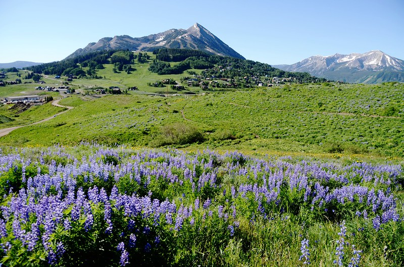 Teddy's Trail, Crested Butte (40)