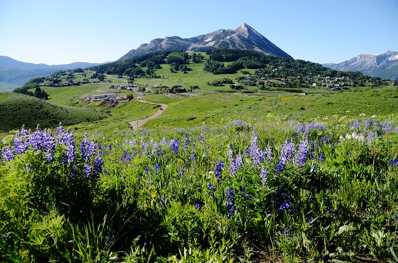Teddy's Trail, Crested Butte (37)