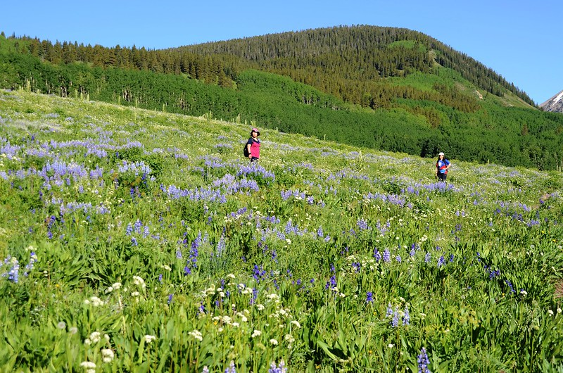 Teddy's Trail, Crested Butte (35)