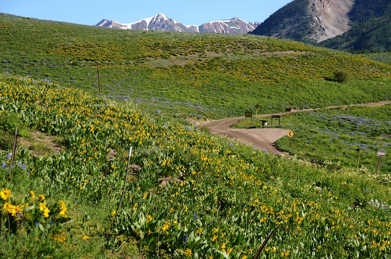 Teddy's Trail, Crested Butte (18)