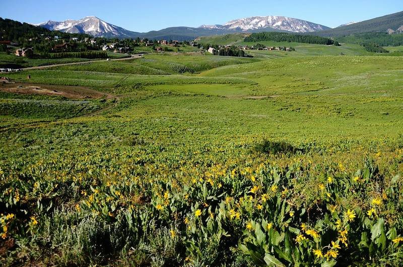 Teddy's Trail, Crested Butte (16)