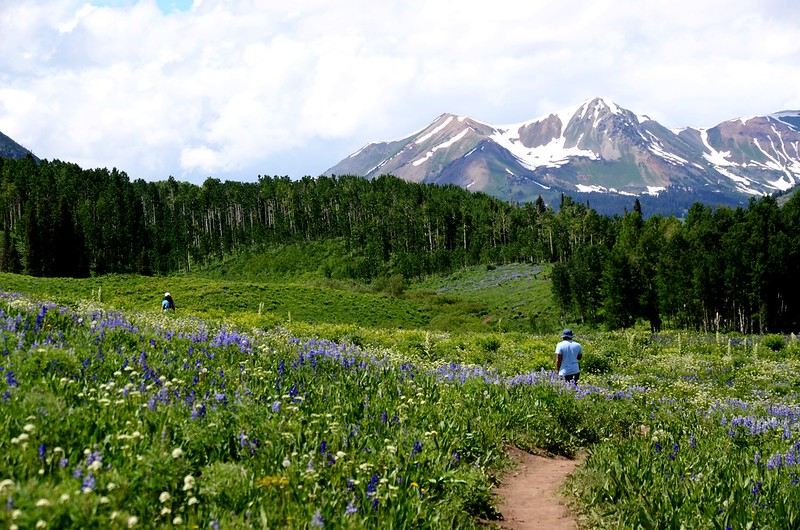 Teddy's Trail, Crested Butte (5)
