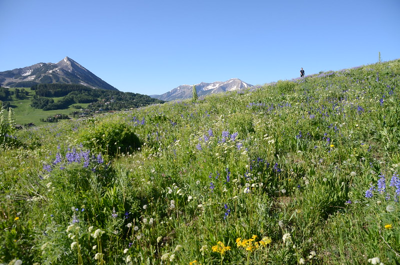Teddy's Trail, Crested Butte (34)
