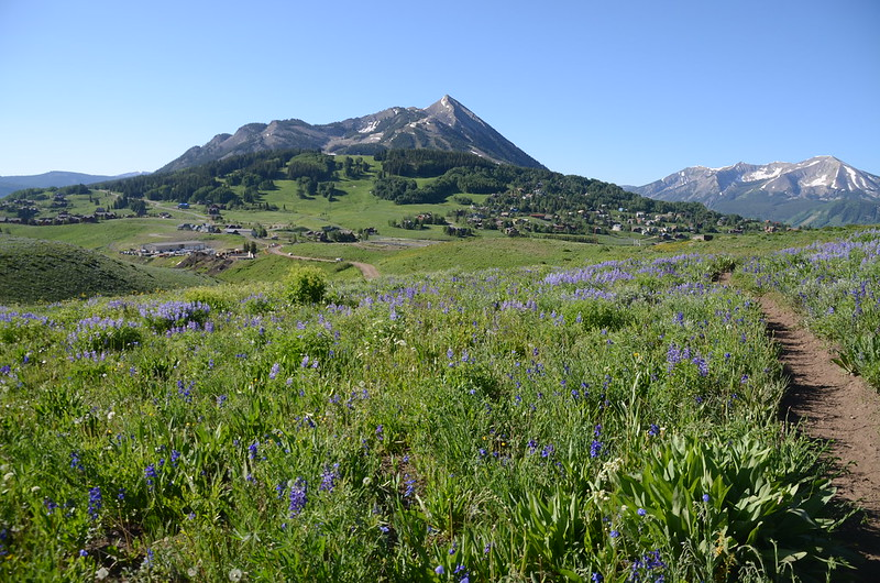 Teddy's Trail, Crested Butte (32)