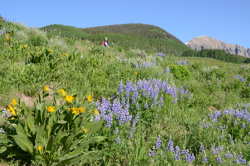 Teddy's Trail, Crested Butte (25)