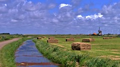 ..HFF in de Polder ..