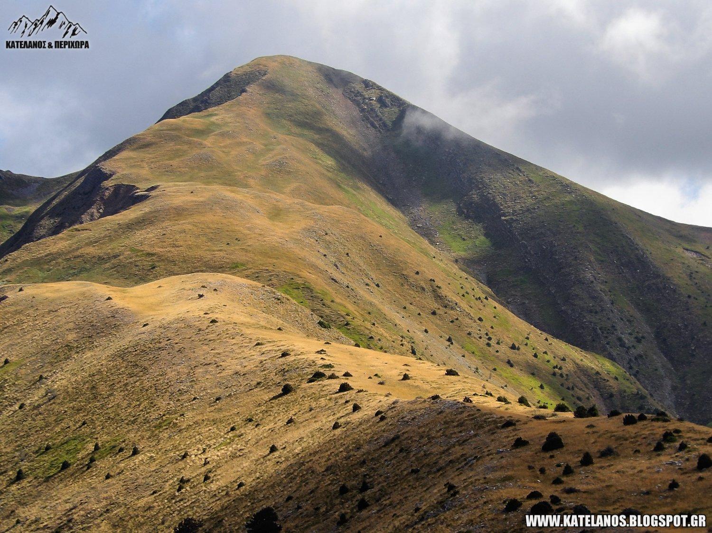 xelidona evrytanias χελιδονα βουνοκορφη