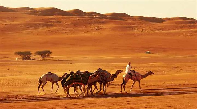 1389 6 Best Places to Visit in Oman 05
