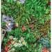 Gardenfloorscape