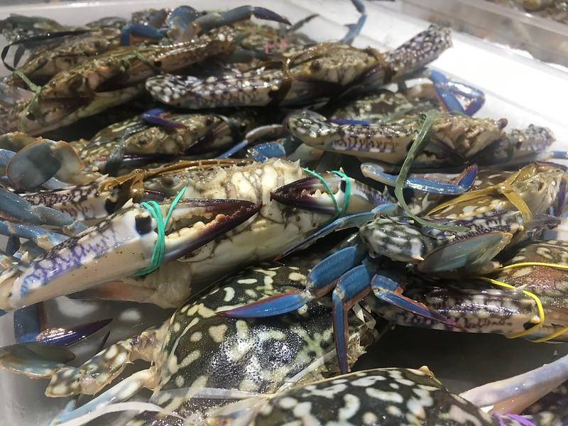 Isla Sugbu Seafood City, McKinley Hill