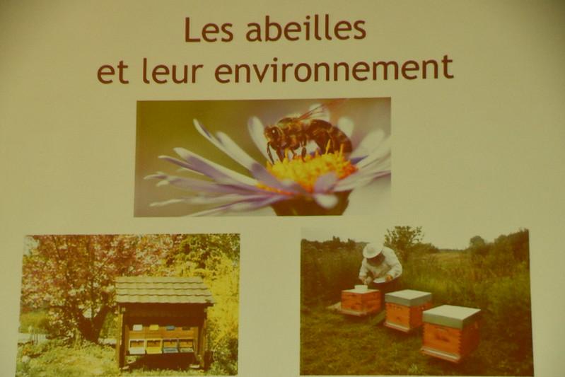 """Conférence """"Les abeilles et leur environnement"""" 28/03/19"""