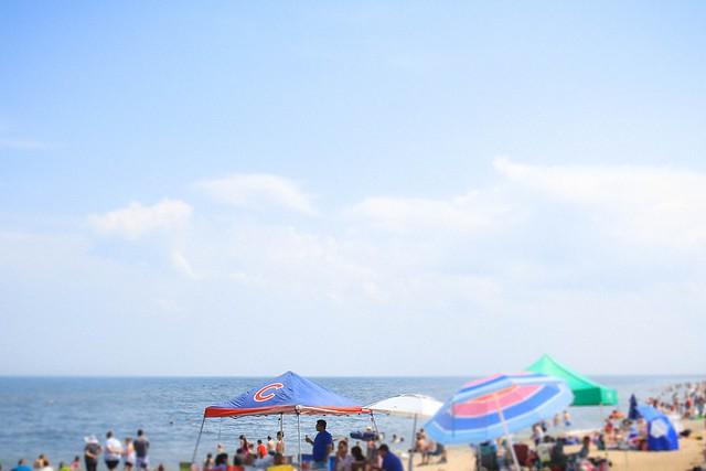 Cubs beach