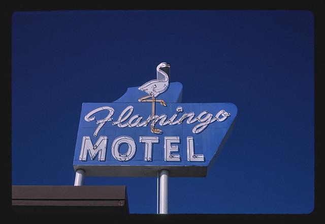 Flamingo Motel sign, Route 24, State Avenue, Kansas City, Kansas (LOC)