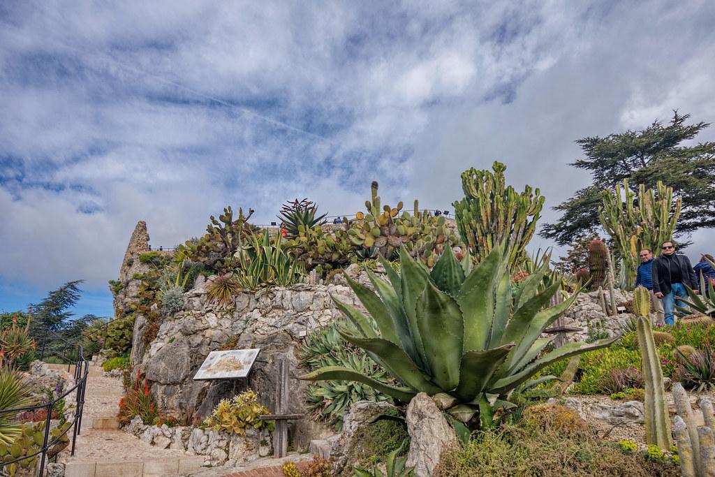 Le Jardin Exotique D Eze A Photo On Flickriver