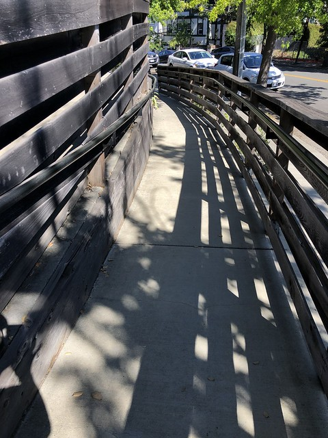 Shadows on the Curve