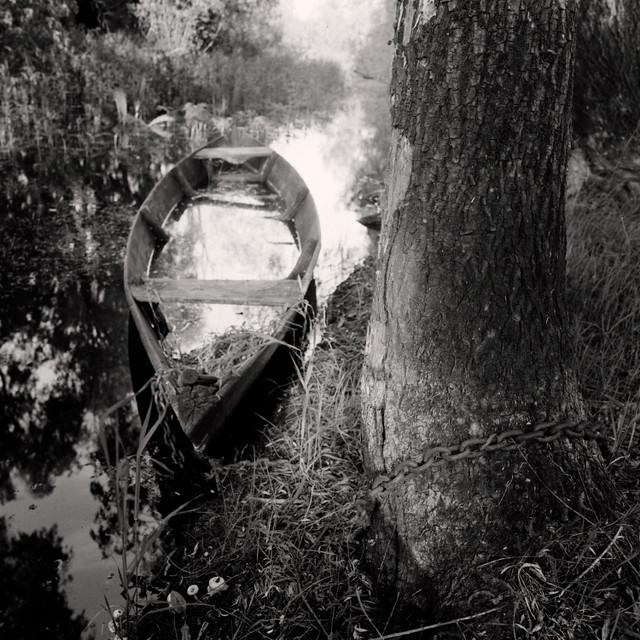 Old boat tied at the old tree, spring, Prіpyat Polesie, Belarus. 2019 | v1