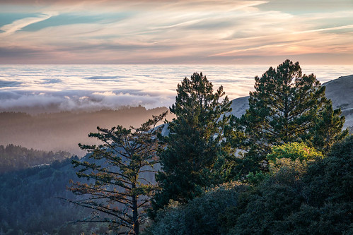 audreysway california midpeninsularegionalopenspacedistrict russianridge russianridgeopenspacepreserve santacruzmountains usa unitedstates landscape outdoor sunset