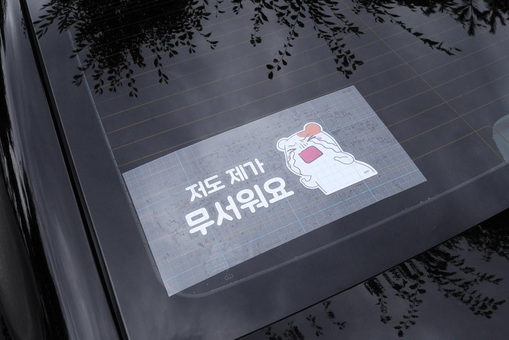 Car Safety Sticker