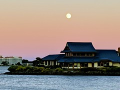 Moon over Benihana