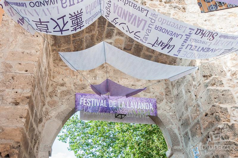 Festival de la lavanda en Brihuega