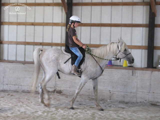 Horse Lessons 5 (2)