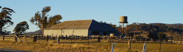 We head for home past the Smiths Rd shearing shed