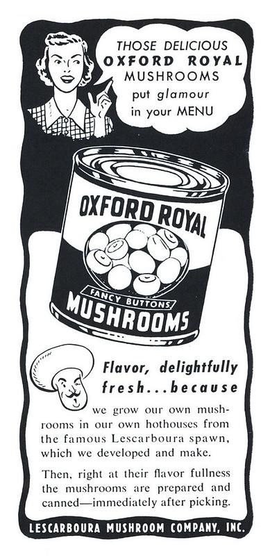 Oxford Royals 1951