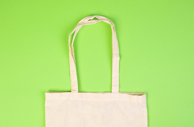Fabric bag isolated on green background