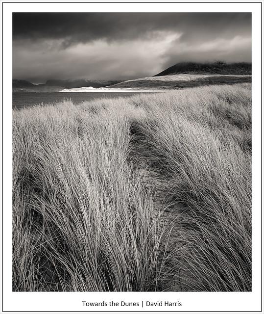 Towards the Dunes