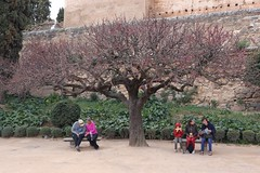 People resting at the Alhambra