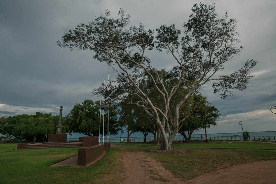 Австралия: Дарвин Австралия: Дарвин 48330081242 9fb4d59676 o