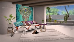 Boho Tropic Kitties