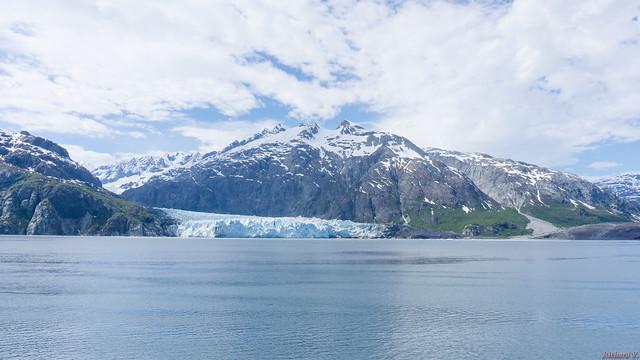 Glacier Bay, Alaska, AK, USA - 1060