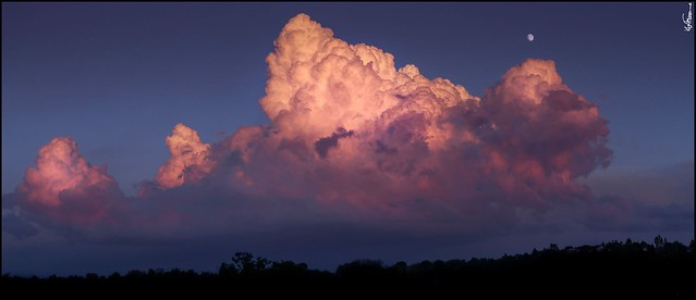 Cumulus Clouds Guelph Ontario Canada