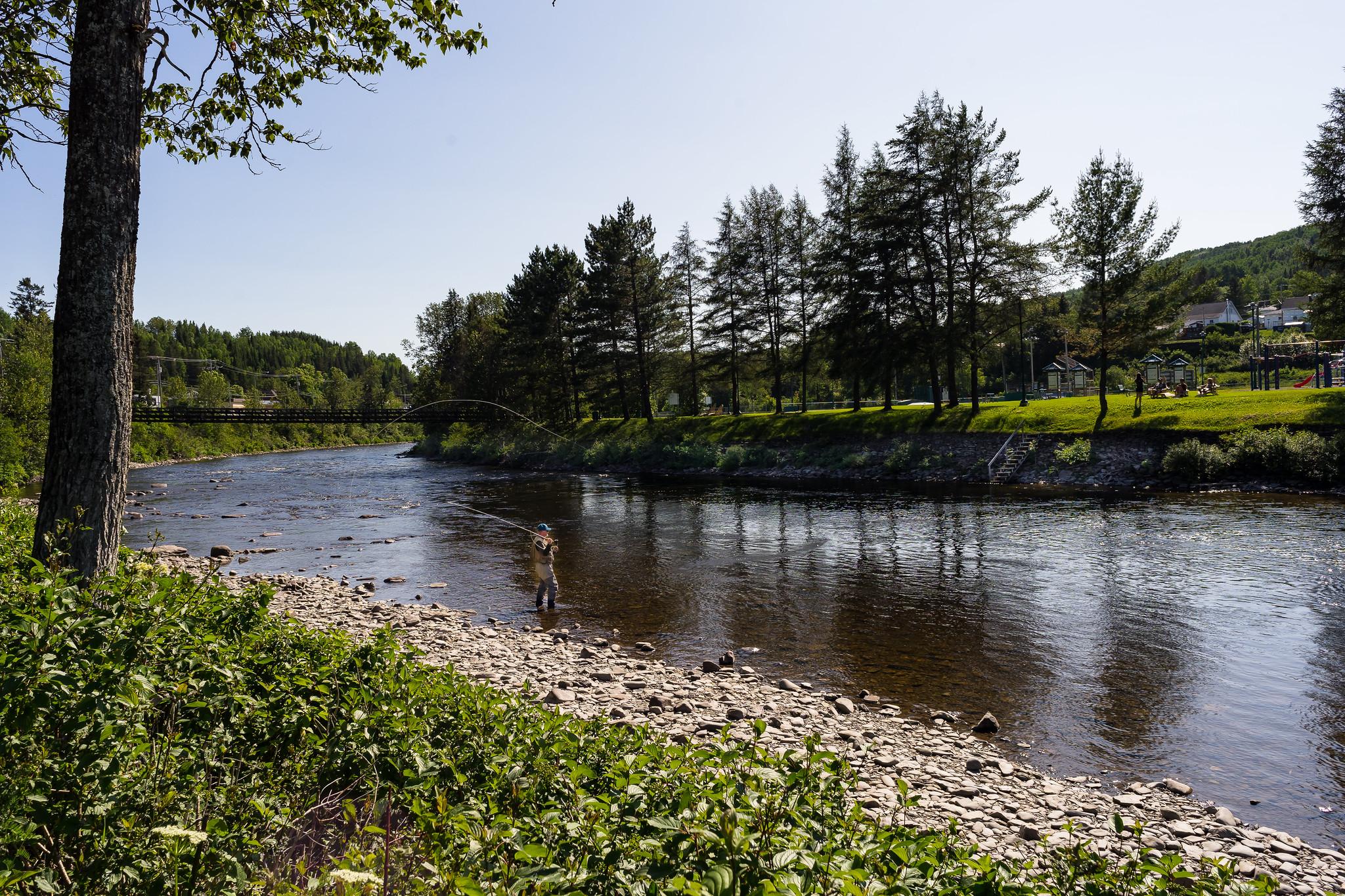 Rivière Matapédia 48331662501_acca6ba0a6_k