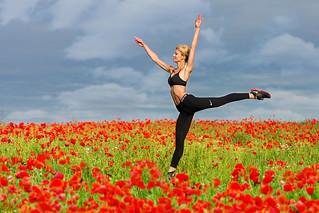 Poppies # 11