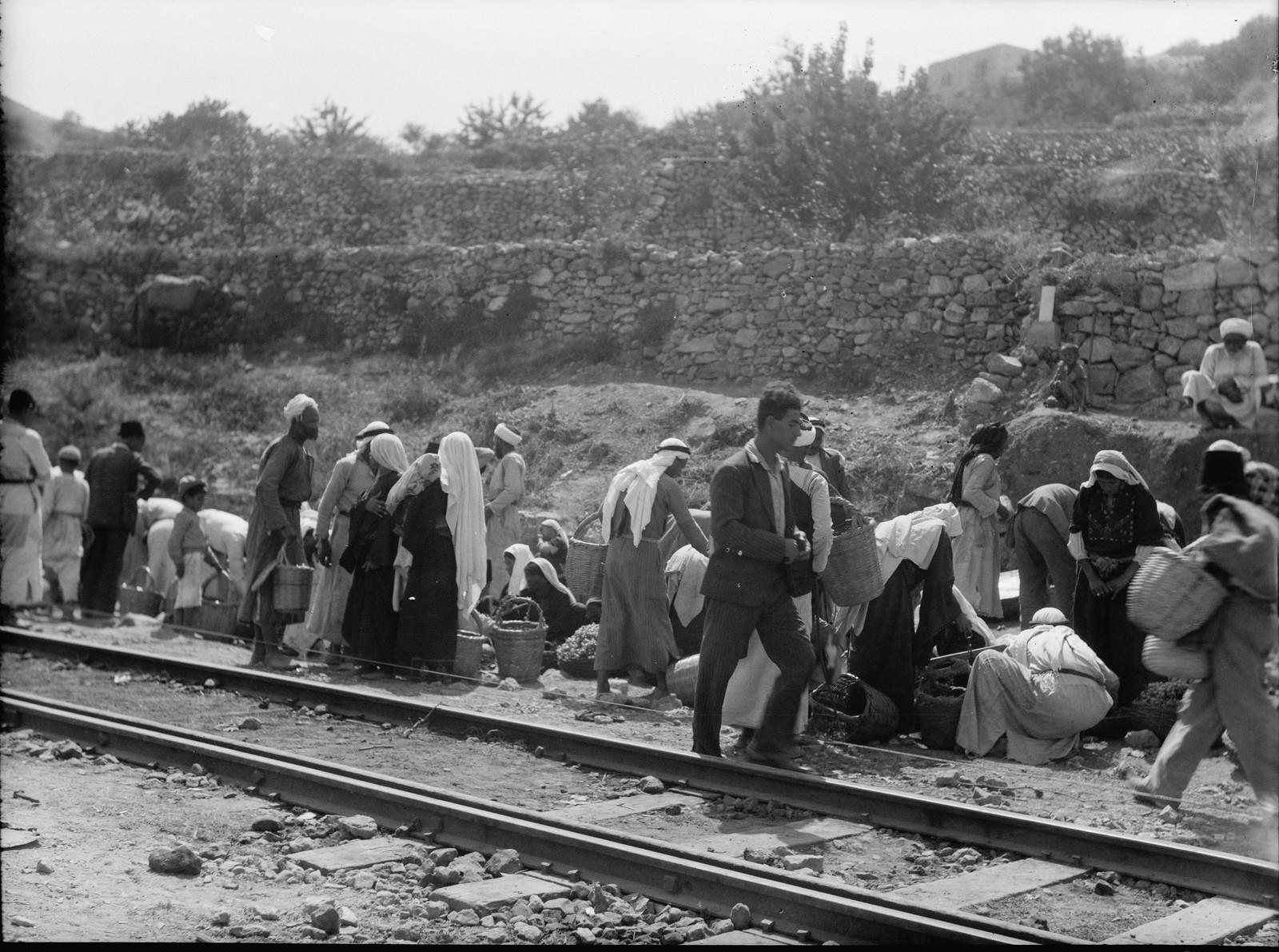 03. Баттир. Стихийная торговля овощами вдоль железнодорожной линии Иерусалим-Яффо