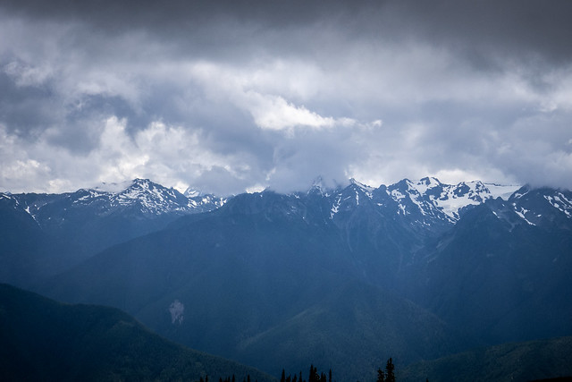 Olympic Hurricane Ridge in Olympic National Parkeninsula-36