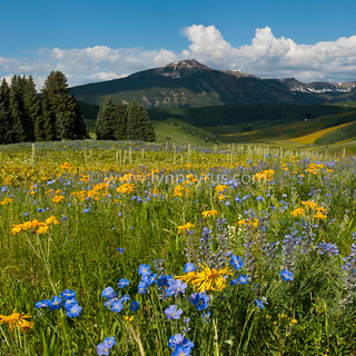 Colorful Crested Butte Morning