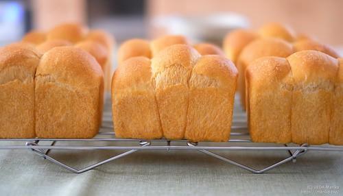 ローズマリー酵母の野菜パン 20190713-DSCT8934 (2)