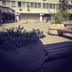 #Buongiorno Sapienza e #buonadomenica con una foto dell'Edificio di Psicologia di @sarahlou165 ・・・ #Repost: «Ci sono luoghi che non dimentichi. #trediciannidopo #facoltàdipsicologia» ・・・ #repostSapienza #ImmaginiDallaSapienza di #studentiSapienza #EdPsico
