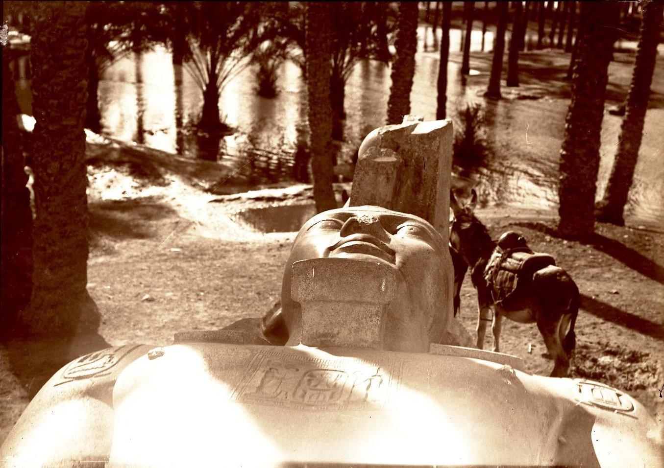 23. Египет. Мемфис. Статуя, изображающая бога Ра (лежащая статуей фараона Рамсеса II)