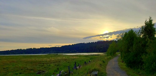 sunset saltmarsh thelerwetlands galaxys9 belfair hood canal hoodcanal trail
