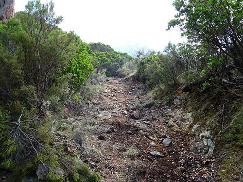 Le chemin de Paliri à l'arrivée sous le col 750m