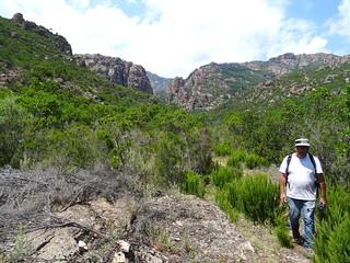Retour sur le chemin aval du Carciara (HR21) : la brèche
