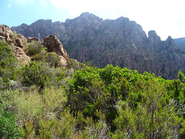 Au col N (750m) : Punta di Monte Sordu