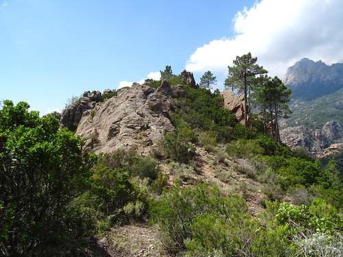 Arrivée au col N (750m) : Punta Russa